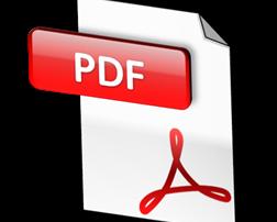 Network PDF Printer